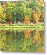 Fall Forest Reflection Metal Print