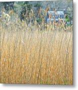 Fall Grass Metal Print