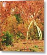 Fall Impression Metal Print