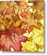 Fall Maple Leaves Metal Print by Christina Meeusen