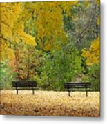Fall Series 12 Metal Print