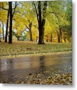Fall Series 15 Metal Print