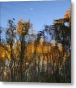 Fall Trees Reflected Metal Print