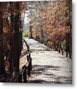 Fall Wonder Land Metal Print