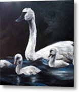 Family Of Swans Metal Print