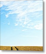 Farmland To The Horizon 2 Metal Print