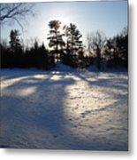 February Pine Tree Shadows Metal Print