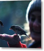 Feeding Birds In Hyde Park Metal Print