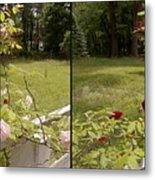 Fence Full Of Roses - Cross Your Eyes And Focus On The Middle Image Metal Print