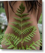 Fern And Woman Metal Print