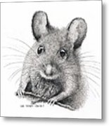Field Mouse Or Meadow Vole Metal Print