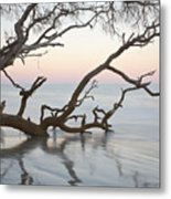 First Light - Hunting Island South Carolina Metal Print