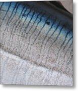 Fish Scales Metal Print