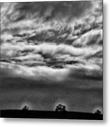 Five Trees In Clouds Metal Print