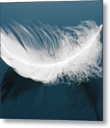 Floating Feather Metal Print
