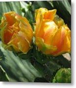 Flores De Cactus Metal Print