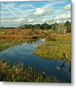 Florida Fall Metal Print