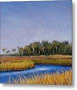 Florida Marsh In June Metal Print