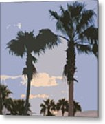 Florida Queen Palm Trees   Metal Print