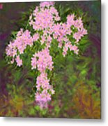 Flower Cross Fancy Metal Print