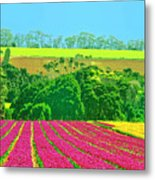 Flower Farm And Hills Metal Print