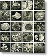 Flower Favorites Bw Metal Print