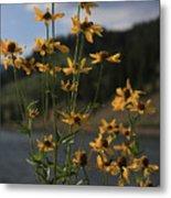 Flower Mountain View Metal Print
