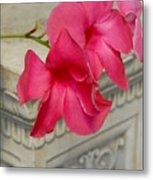 Flowers 115 Metal Print