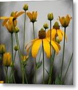 Flowers In The Rain Metal Print