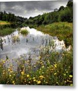 Flowery Lake Metal Print by Carlos Caetano