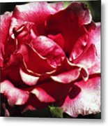 Flowing Flower Metal Print