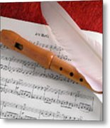 Flute And Feather Metal Print by Carlos Caetano