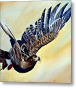 Flying Eagle Metal Print