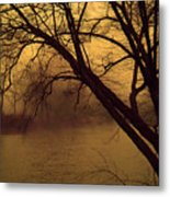 Fog In The Morning. Metal Print