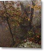 Fog On The Mountain Metal Print