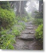 Foggy Forest Path Metal Print