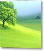 Foggy Morning In The Valley Metal Print