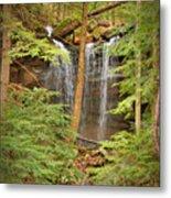 Forest Falls Metal Print