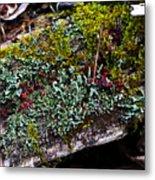 Forest Floral Delight Metal Print