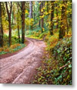 Forest Footpath Metal Print by Carlos Caetano