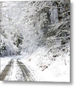 Forest Service Road 76 Metal Print