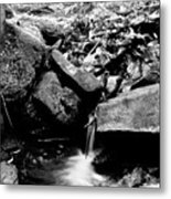 Forest Stream In Black And White Metal Print
