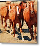 Four Horses Running Metal Print