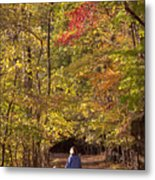 Four Year Old Boy And His Mom Walk Hand Metal Print