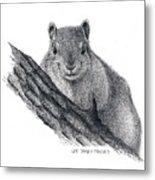 Fox Squirrel Metal Print