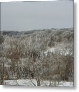 Frost On The Trees Metal Print