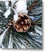 Frosty Pine Cone Metal Print