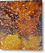 Frozen Colors  Metal Print