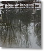 Frozen Lake Reflection Metal Print