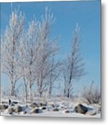 Frozen Views 2 Metal Print